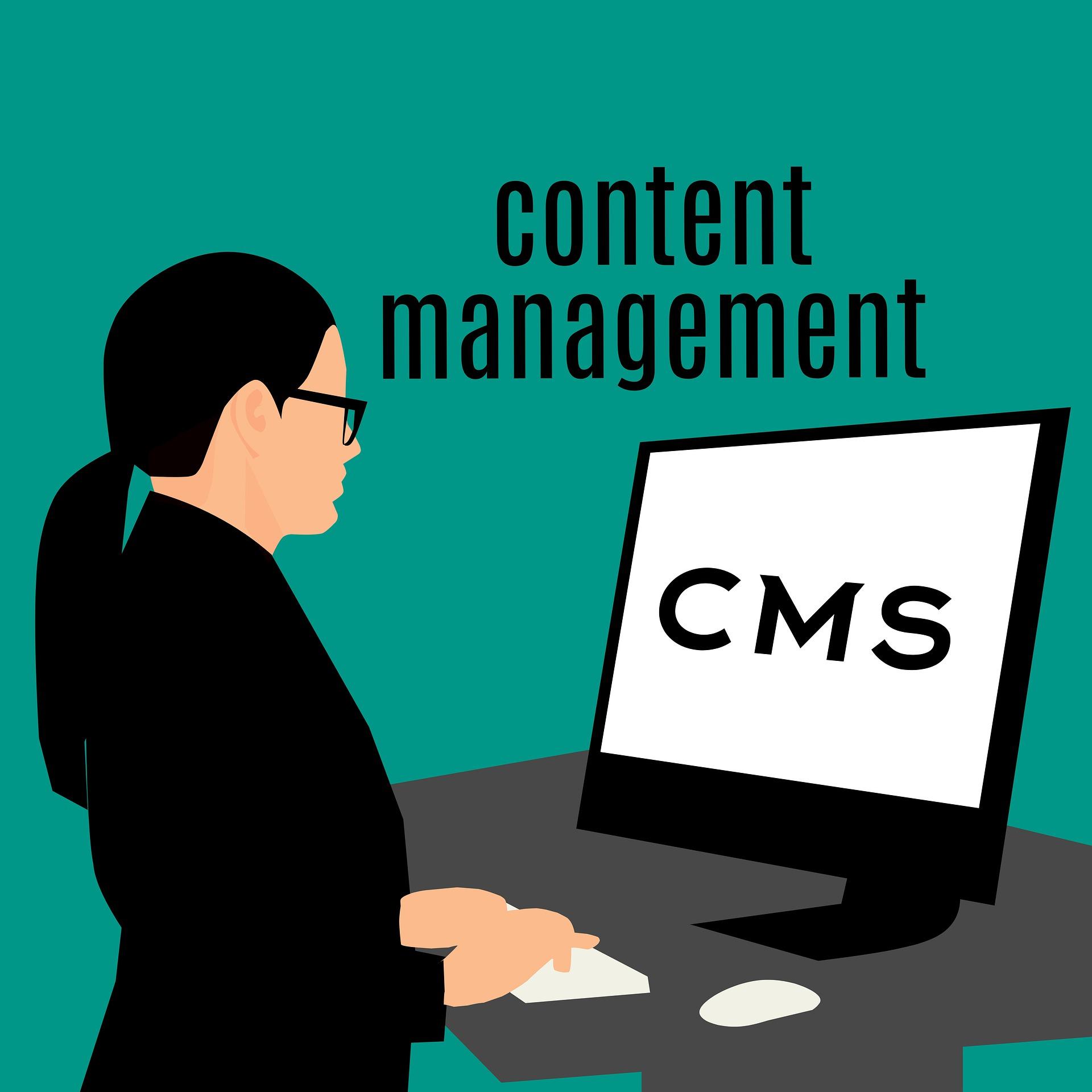 CMS構築をWeb制作のプロがわかりやすく解説!